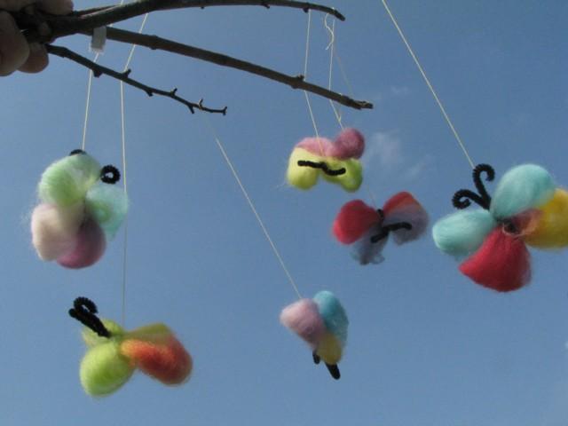 Woolbutterflies