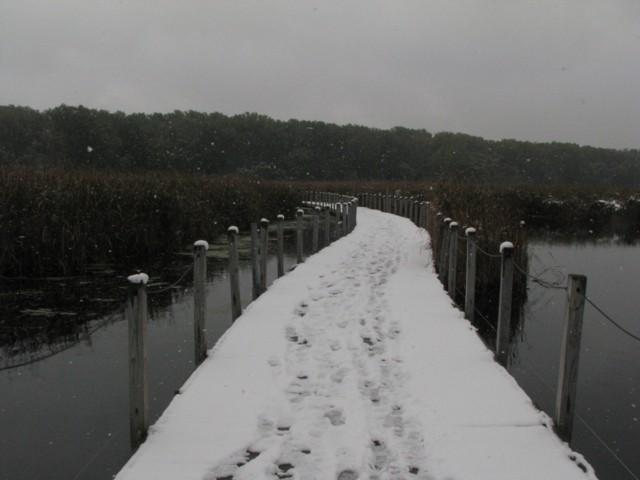 Floatingbridge