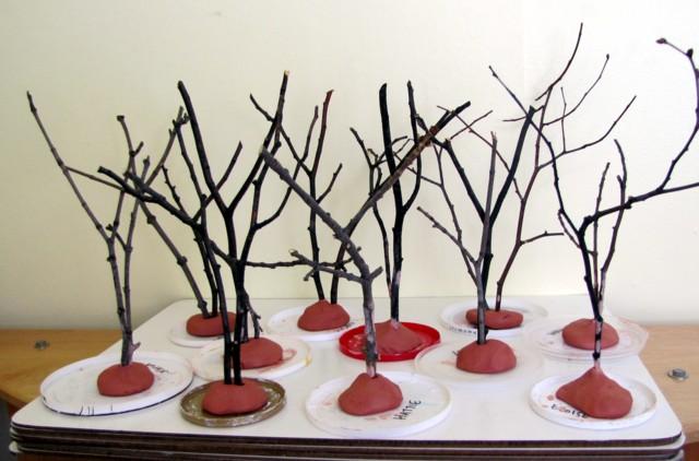 Tthtrees