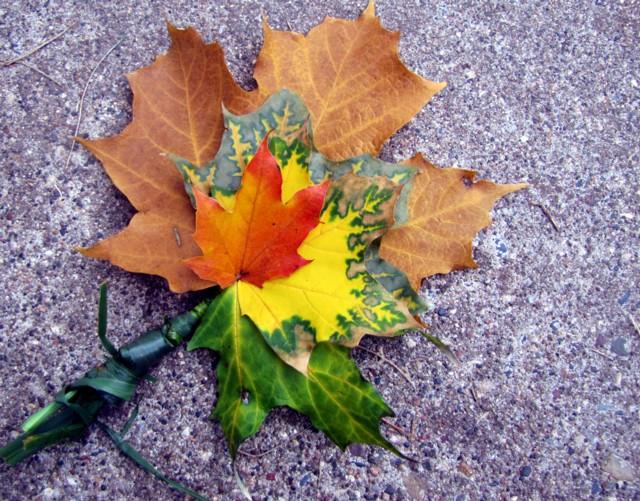 Leafbouquet