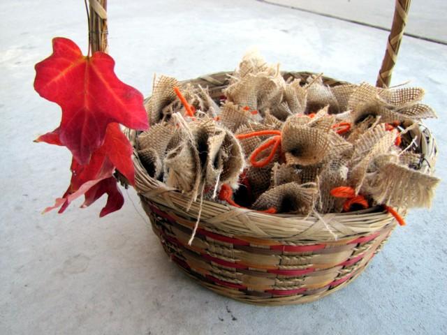 Basketofbulbs