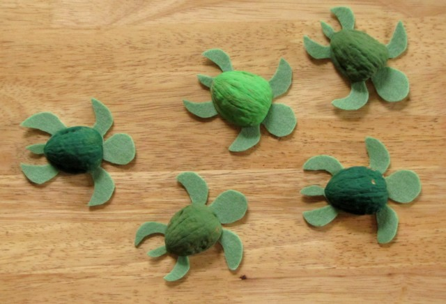 Seaturtles