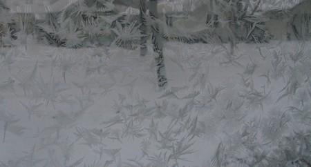 Frosty_2