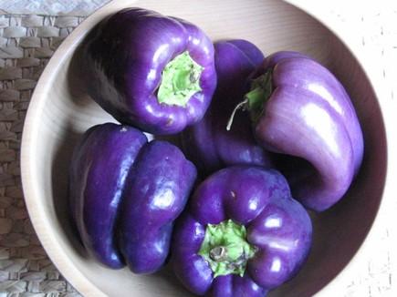 Purplepeppers